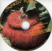 """PUNKIN PURSE"" DVD"